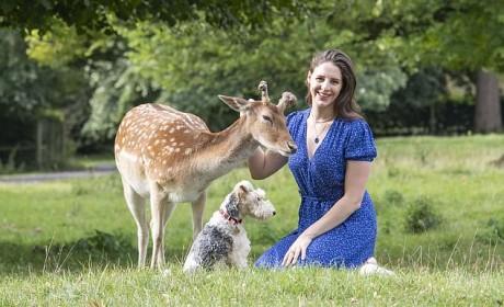 父女俩救了只奄奄一息的小鹿,将它养大并放回野外...