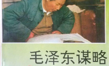 《毛泽东谋略》萧诗美——PDF电子书下载