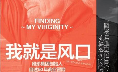 《我就是风口》理查德·布兰森 -PDF电子书下载