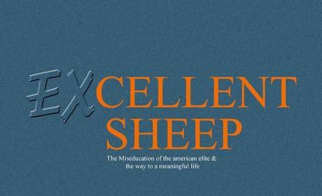 《优秀的绵羊》威廉·德雷谢维奇 PDF电子书下载