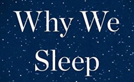 《Why We Sleep》Matthew Walker PDF EPUB 电子书下载