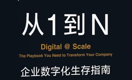 《从1到N:企业数字化生存指南》尤尔根·梅菲特PDF电子书下载