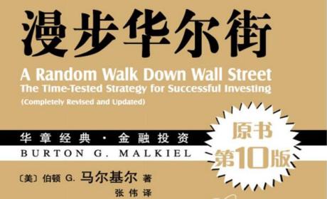 《漫步华尔街》(第10版中文+英文原版)伯顿 G. 马尔基尔 PDF电子书下载