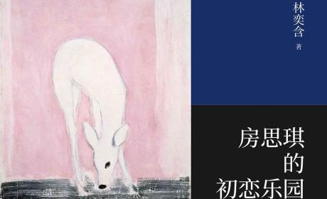 《房思琪的初恋乐园》林奕含 PDF电子书下载