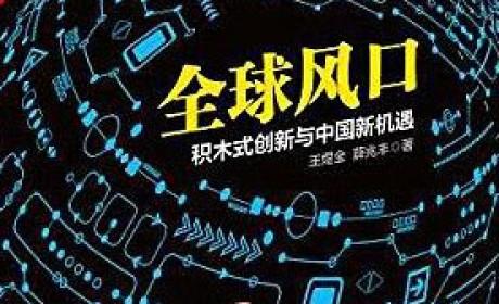 《全球风口:积木式创新与中国新机遇》 王煜全 / 薛兆丰 PDF电子书下载
