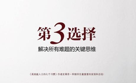 《第3选择:解决所有难题的关键思维》(第3選擇)史蒂芬·柯维 PDF电子书下载