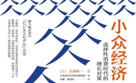 《小众经济:选择性消费时代的增长对策》PDF电子书下载