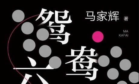 《鸳鸯六七四》PDF 电子书下载