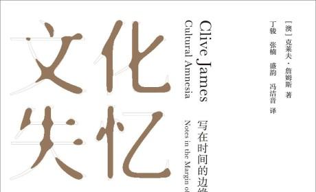 《文化失忆 : 写在时间的边缘》PDF MOBI EPUB电子书下载