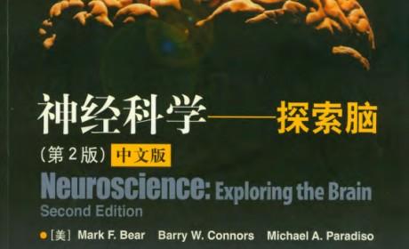 《神经科学:探索脑》