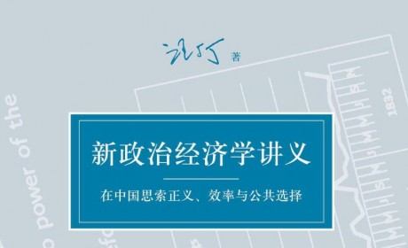 《新政治经济学讲义:在中国思索正义、效率与公共选择》